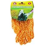 Pomichnytsya Gloves for garden S