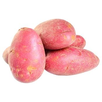 Картошка розовая - купить, цены на Восторг - фото 1