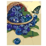 Rosa Start Basket With Blueberries Picture By Numbers Creativity Set