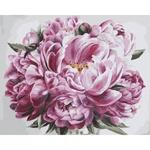 Ideyka Pomp Bouquet Painting By Numbers 40х50cm