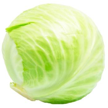 Ukraine Cabbage
