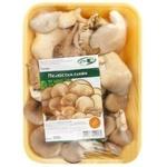 Mushrooms oyster mushrooms Dinbo fresh 200g