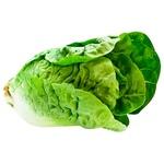 Romen Baby Salad