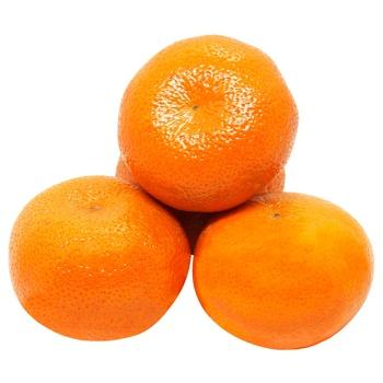 Israel Jaffa Tangerines
