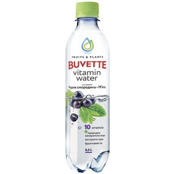 Buvette juice drink with black currant and mint 0,5l