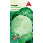 Agrocontract Seeds Cabbage Glory 1g