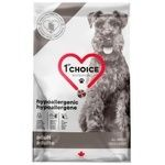 Food 1st choice duck for dogs 2000g Canada