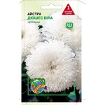 Aster White Duchess Flowers Seeds 0.1g
