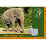 Комплект открыток Балтия Друк Киевский Зоопарк 10,5x14,8см