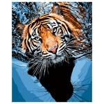 Набор для росписи по номерам Тигр в воде 40х50см