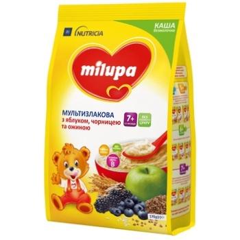 Каша Milupa Nutricia безмолочная мультизлаковая с яблоком, черникой и ежевикой 170г