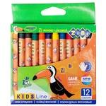 ZiBi Wax Pencils 12 Colors
