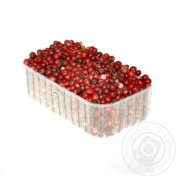 ягода брусниця свіжа Україна