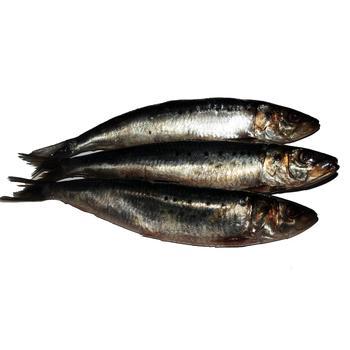 Рыба сельдь иваси слабосоленая