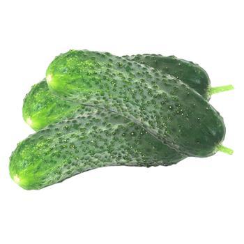 Short cucumber - buy, prices for Furshet - image 1