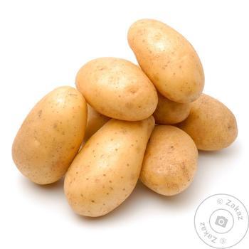 Картофель молодой весовая - купить, цены на Таврия В - фото 1