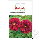 Sadyba Tsentr Dahlia Bloody Mary Seeds 0.1g