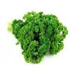 Greens parsley curled Marka promo packed 70g
