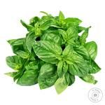 Basil 1 Bunch
