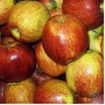 Фрукт яблука джонаголд свіжа