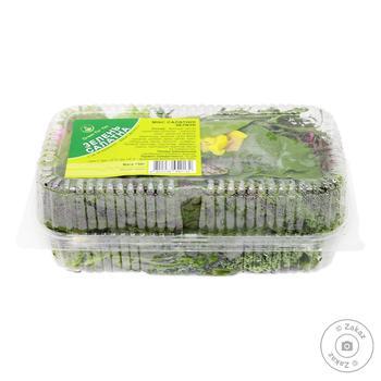 Микрогрин Green For You Микс салатной зелени 130г