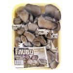Fresh Oyster Mushrooms 250g