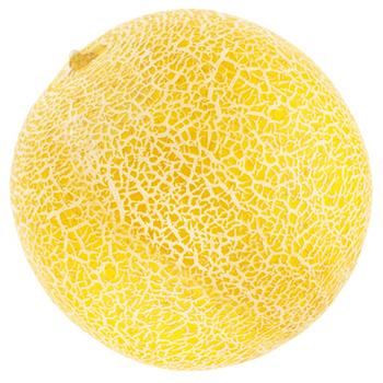 Melon by Weight