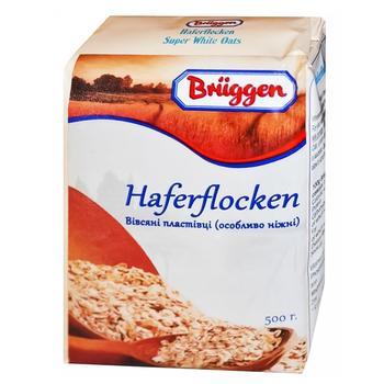 Bruggen Tender Oatmeal 500g