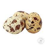 Domestic Elite Quail Eggs