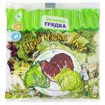 Zelena Gryadka Spanish Taste Salad Mix 200g