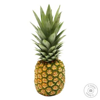 Pineapple A6 (1801-2100g)