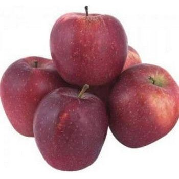 Fruit apple red chief fresh