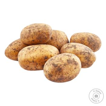 Картофель белый Украина кг - купить, цены на Восторг - фото 1
