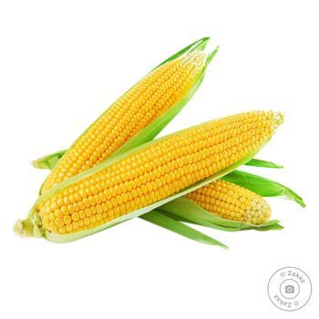 Кукуруза Украина - купить, цены на Восторг - фото 1