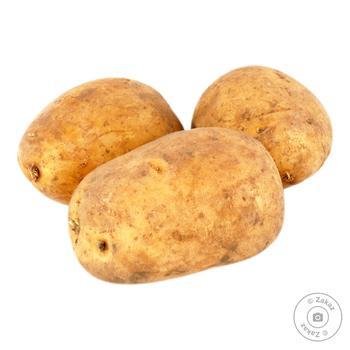 Картопля імпорт вагова - купити, ціни на Фуршет - фото 1