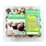 Vesta-Lyuks Quail Eggs 20pc
