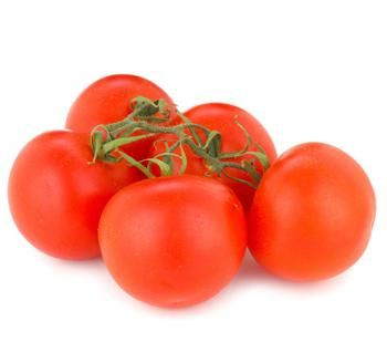 Branch of tomatoes