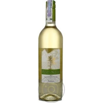 Вино совиньон-блан Пунта ногал белое сухие 12.5% 2011год 750мл Сентрал велли Чили