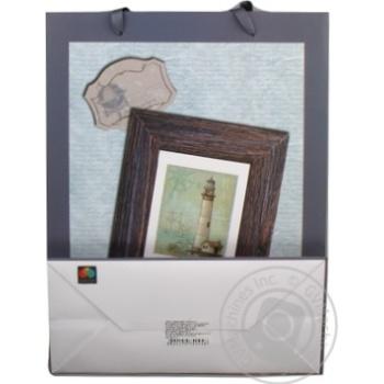 Пакет подарочный Timeopt Premium L 30x23x10.6см - купить, цены на Novus - фото 3