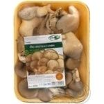 Mushrooms oyster mushrooms Dinbo fresh 200g