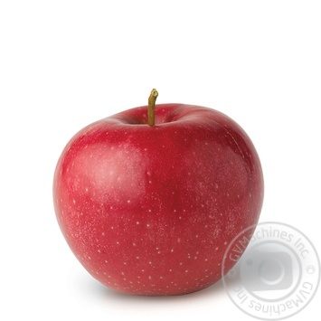 Фрукт яблоки глостер Перекресток свежая