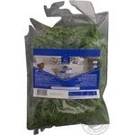 Greens tarragon Horeca select fresh 100g