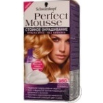 Paint-mousse Perfect mousse golden brown for hair Germany
