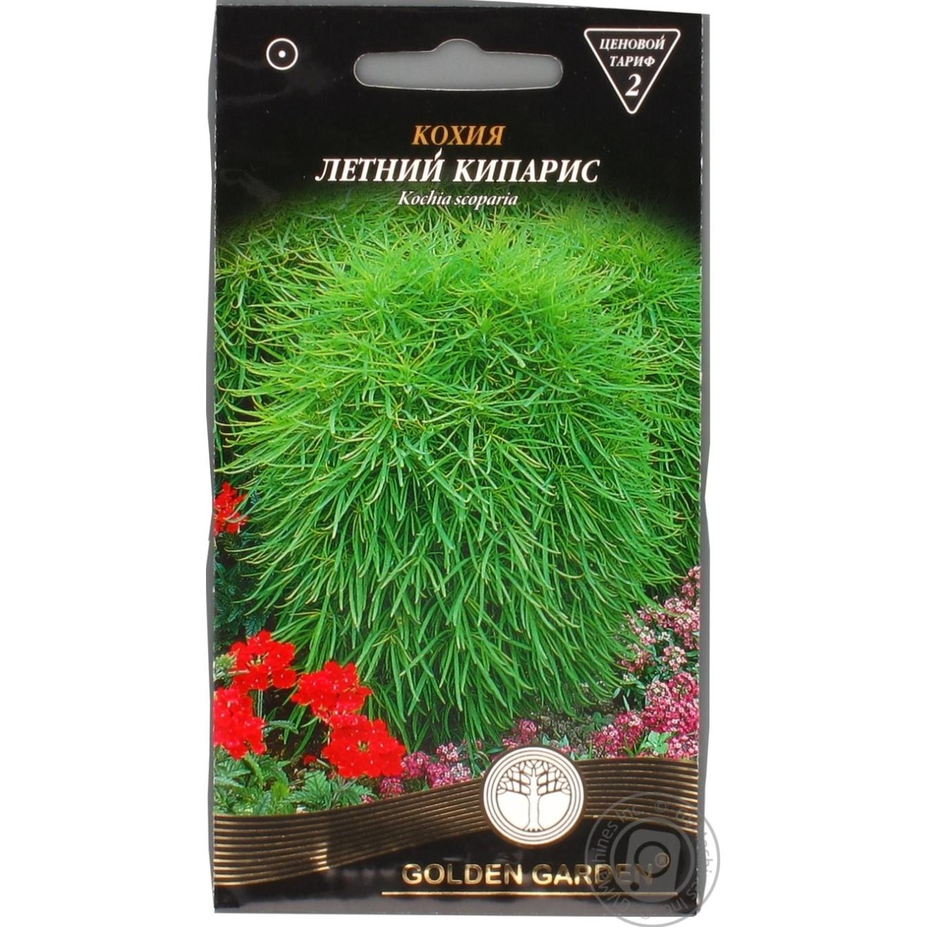 Насіння Квіти Кохія Літній кіпарис Golden Garden 0 c03d0f70b929b