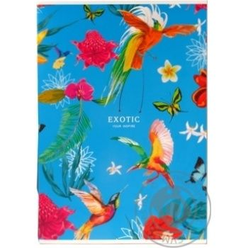Student Notebook in Line A4 40 Sheets - buy, prices for Auchan - photo 3