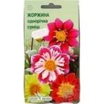 Квіти Жоржини однорічна суміш