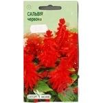 Насіння Елітсортнасіння Квіти Сальвія блискуча червона 0,1г