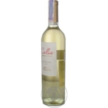 Вино Salentein Dulce біле напівсолодке 10,5% 0,75л - купити, ціни на CітіМаркет - фото 4