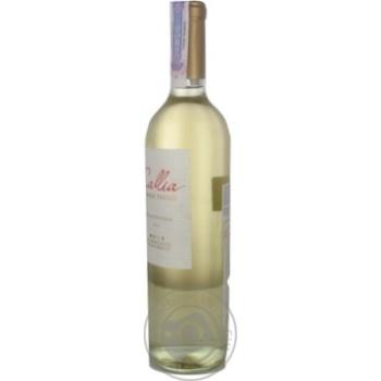 Вино Salentein Dulce біле напівсолодке 10,5% 0,75л - купити, ціни на CітіМаркет - фото 5