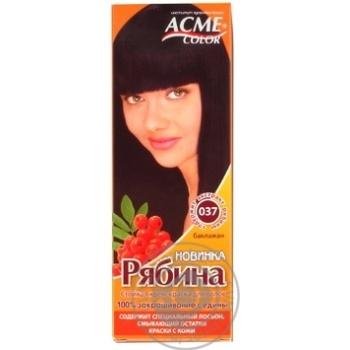 Фарба для волосся Acme Color Горобина 037 Баклажан